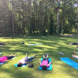 Cours de yoga en forêt de Fontainebleau