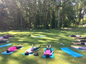 yoga et cheval en forêt de Fontainebleau