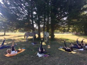 Yoga et Cheval Fontainebleau
