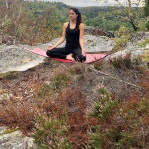 Médiation en forêt de Fontainebleau