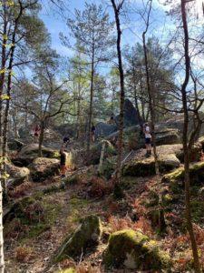 Coaching Trail, Renfo et Respiration - Fontainebleau